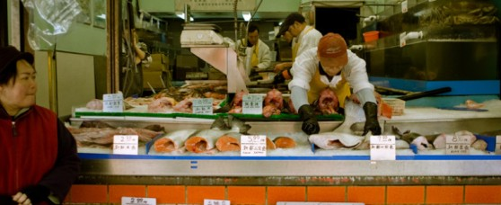 a-fresh-seafood-store-sells-locally-caught-fish-and-shellfish-768x315