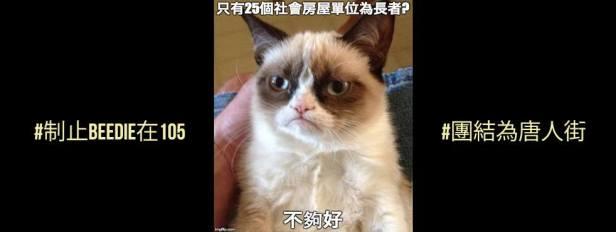 25 SH Units - Meme (Chinese)